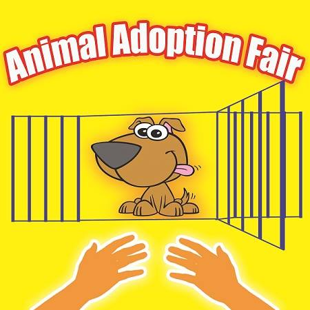 Animal Adoption Fair, Ft. Lauderdale